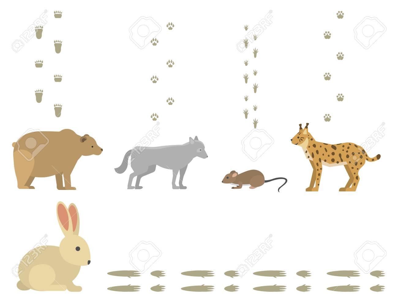 Las Huellas De Los Animales Incluyen Mamíferos Y Aves Pie Imprimir ...