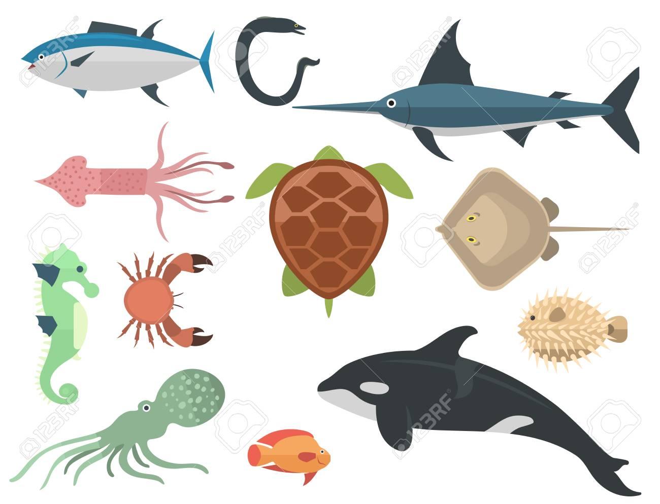 Vecteur Animaux De Mer Créatures Personnages Dessin Animé Océan Sous Marin Aquarium Vie Eau Graphique Aquatique Animaux Animaux Sauvages