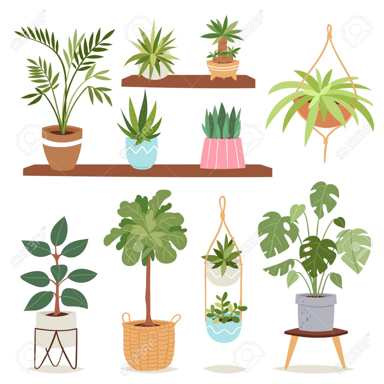 House Indoor Plants And Nature Flowers Interior Decoration Houseplant Royalty Free Cliparts Vectors And Stock Illustration Image 90926293