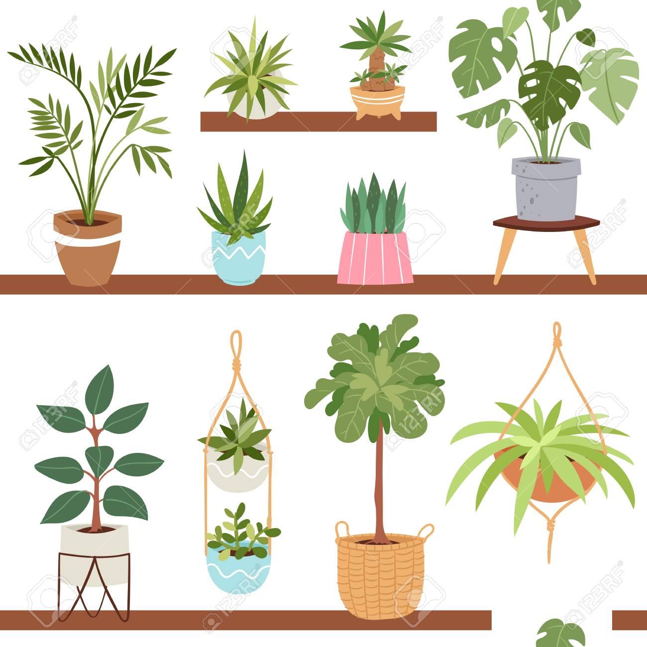 Casa Interior Vector Plantas Y Naturaleza Flores Caseras En Maceta - Flores-interior