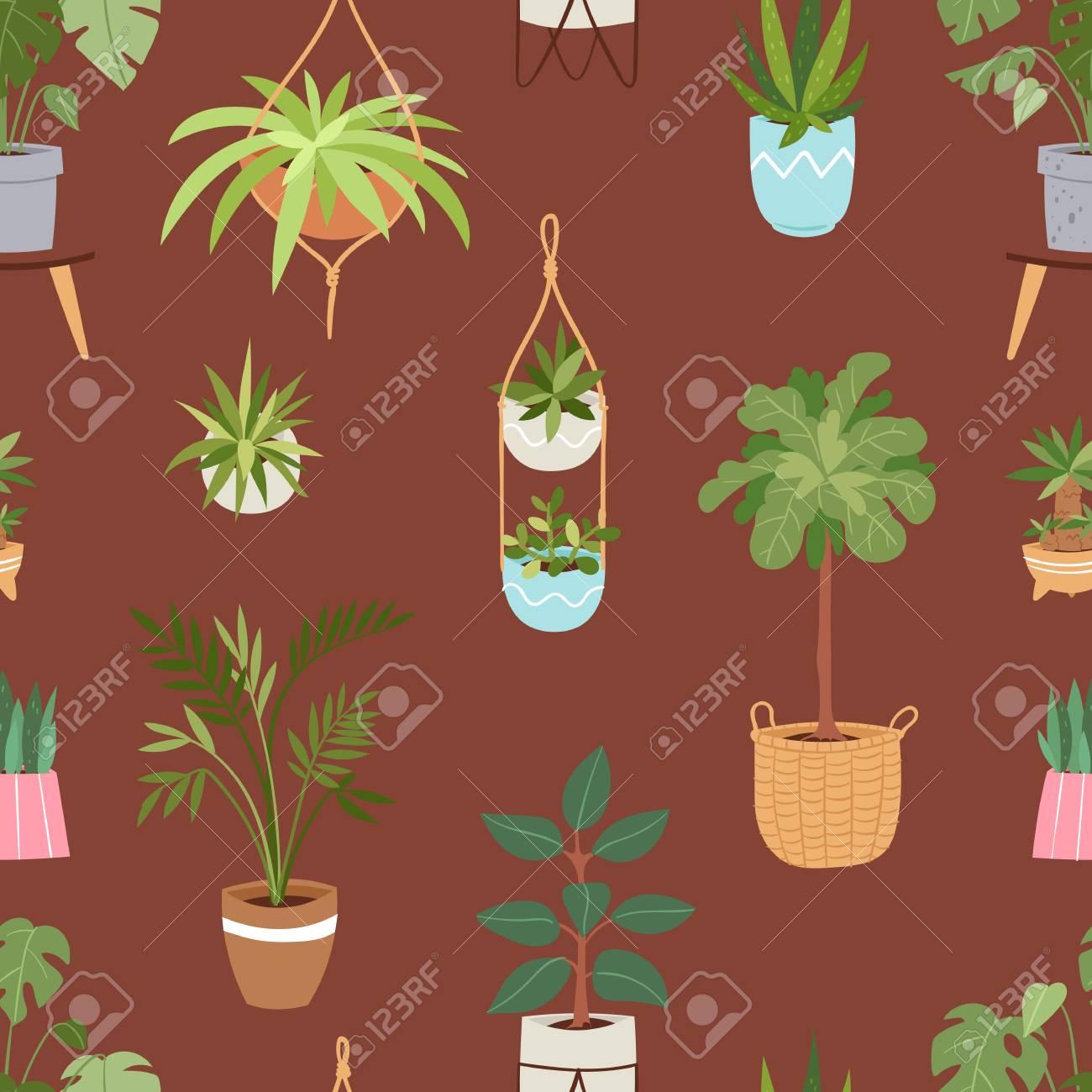 Plantes Vecteur Interieur Maison Et La Nature Des Fleurs Faites