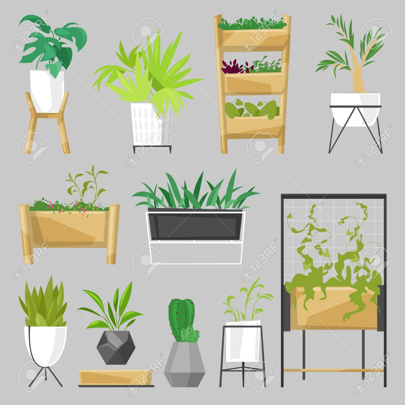 Plants In Flowerpots Vector Potted Houseplants Indoor Botanic Cactuses Aloe  For House Decoration With Floral Collection