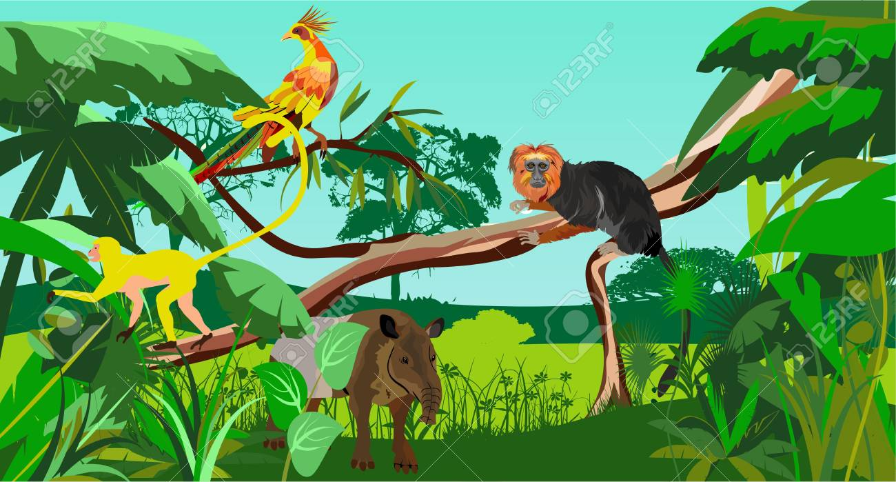 brazilian monkey black leo in jungle vector royalty free cliparts rh 123rf com jungle vector illustrator jungle vector freepik