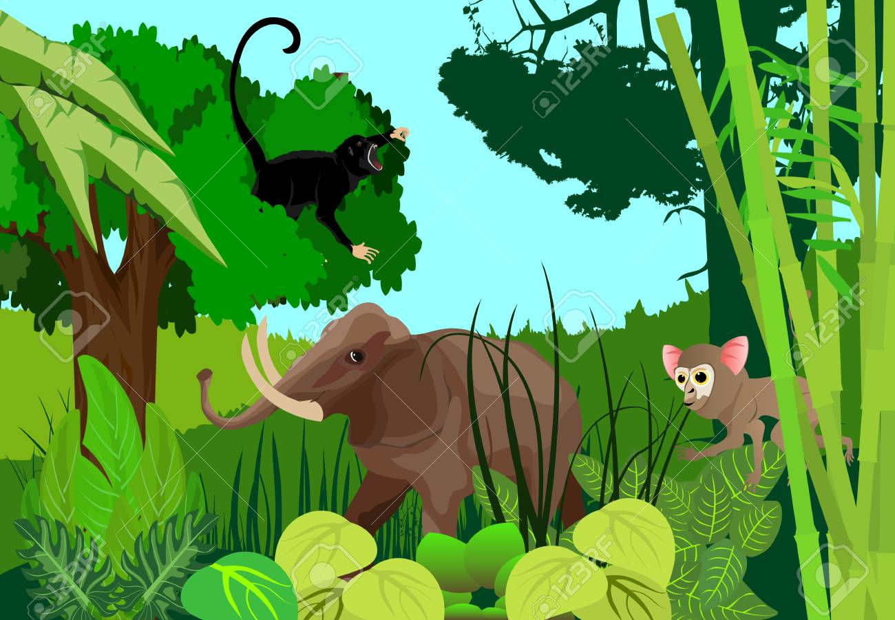 wild animal in jungle theme background royalty free cliparts