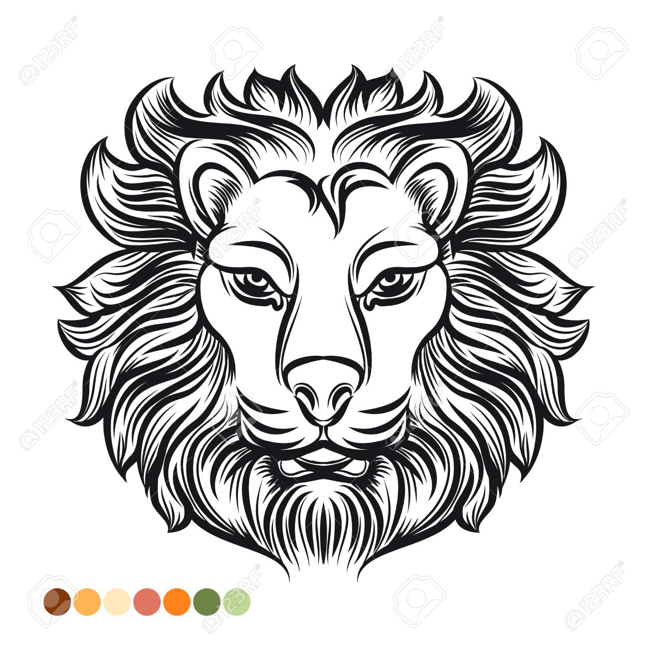 Wild Lion Coloring Page With Colors Samples Stock Photo, Picture And ...