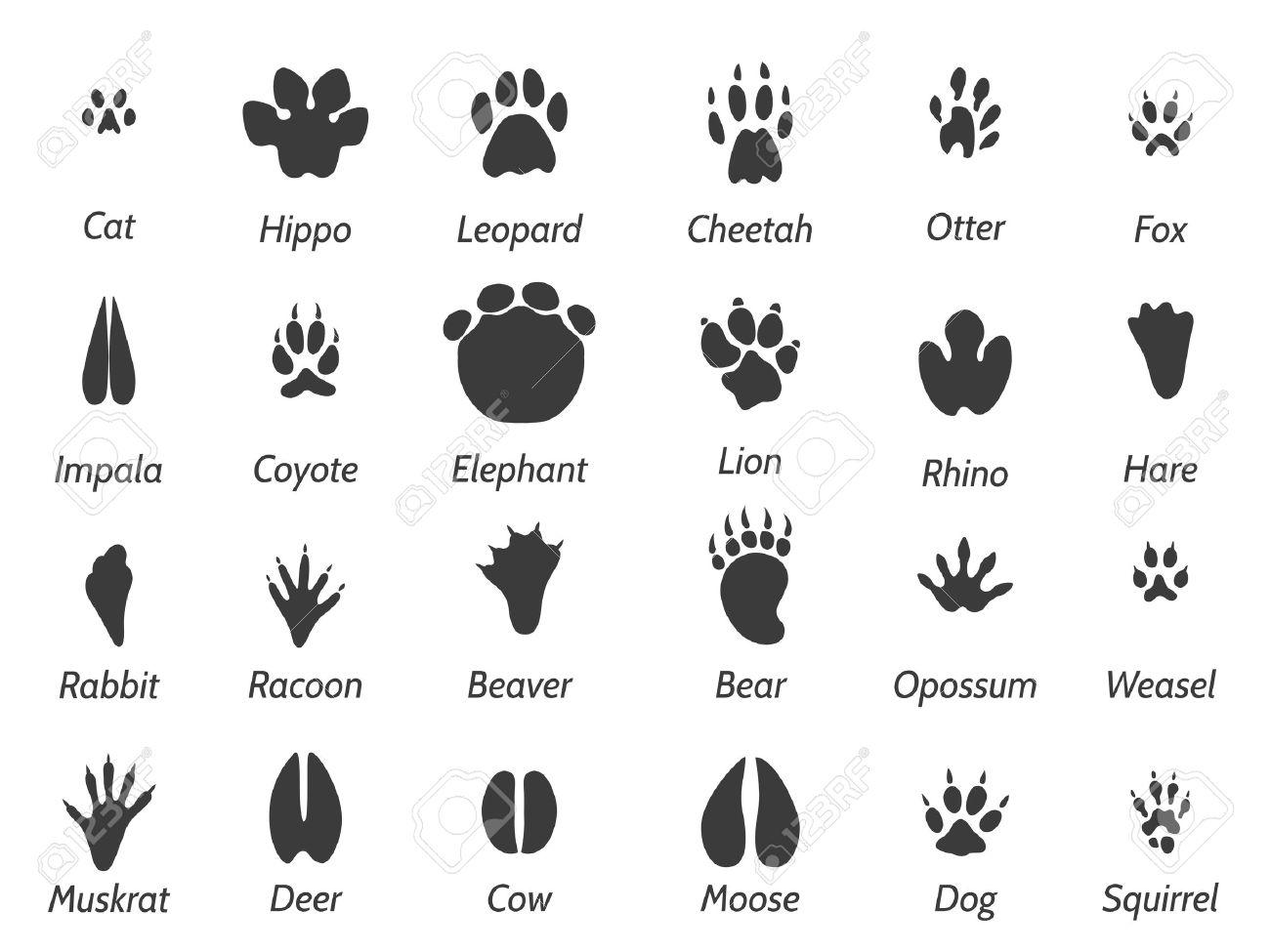野生動物は黒い足跡の看板と背景を白に設定です。ベクトルのアイコンを