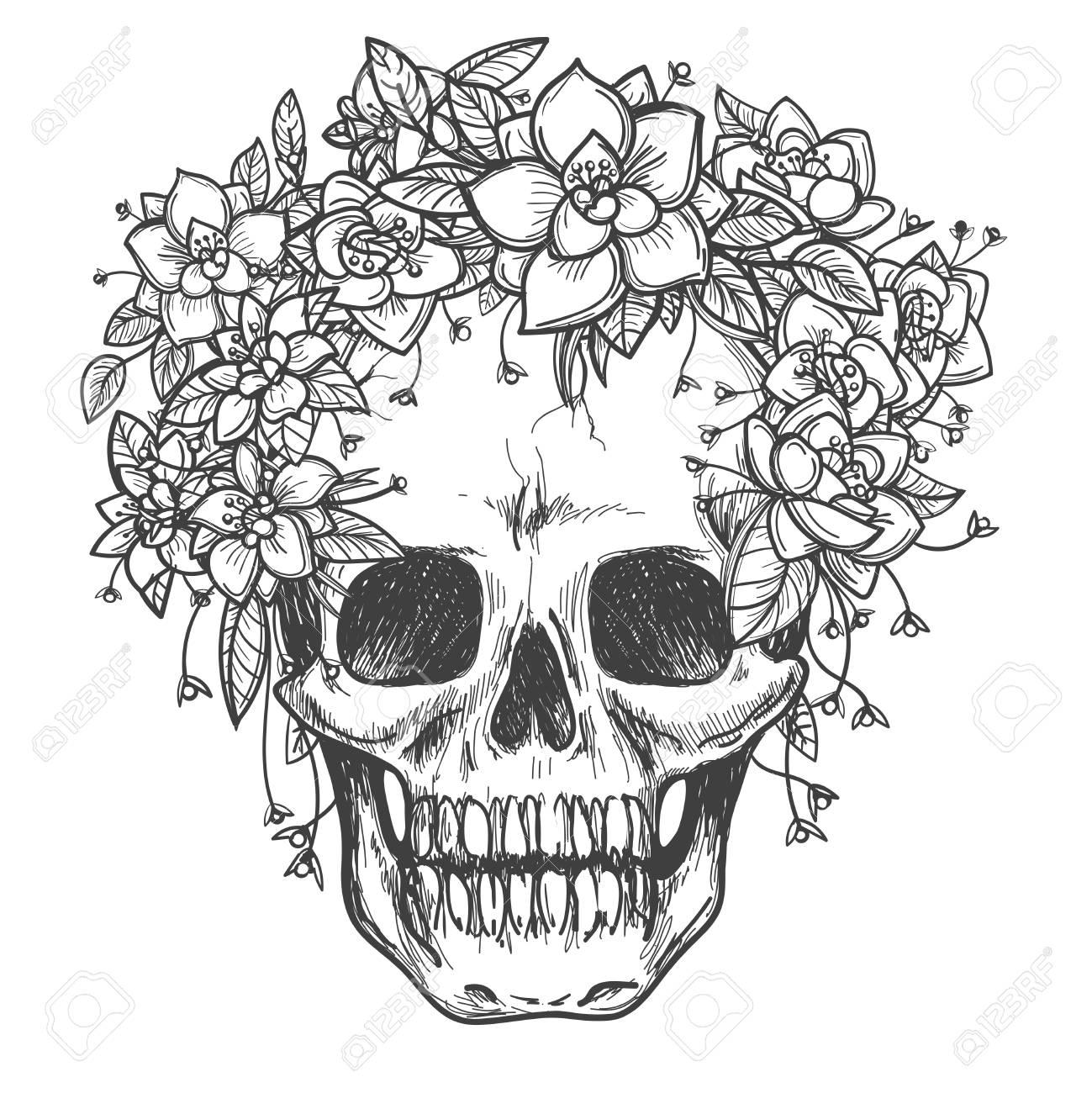 Dessin Crâne Mort Avec Des Fleurs De Rose Vecteur Croquis Isolé Sur