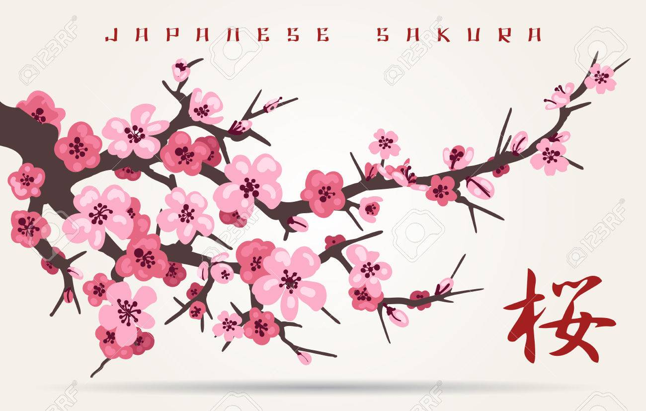 Japan Cherry Blossom Branching Tree Vector Illustration Japanese