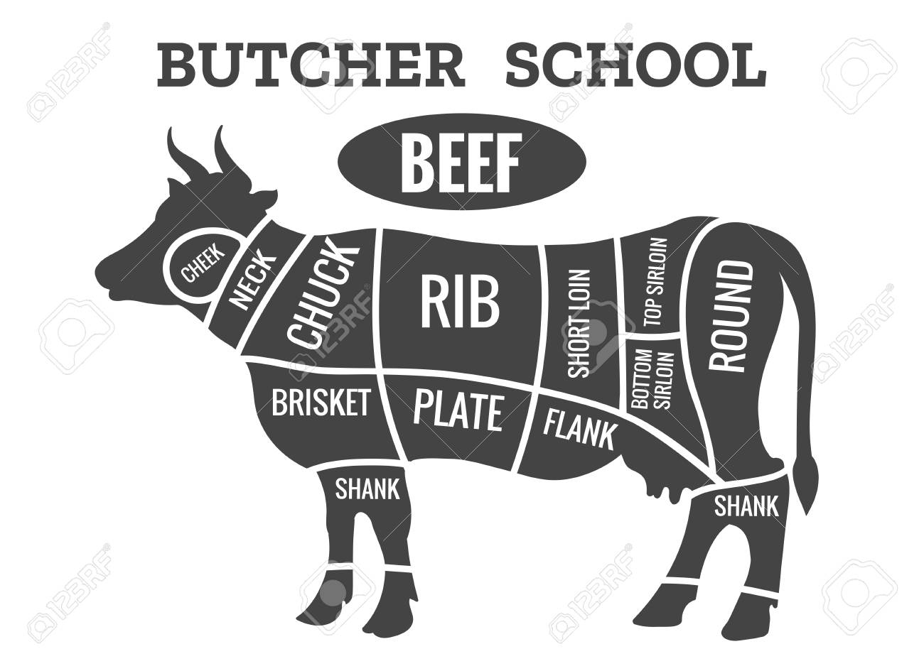 91662608 cow butcher diagram cutting beef meat or steak cuts diagram chart for restaurant poster vector illus cow butcher diagram cutting beef meat or steak cuts diagram