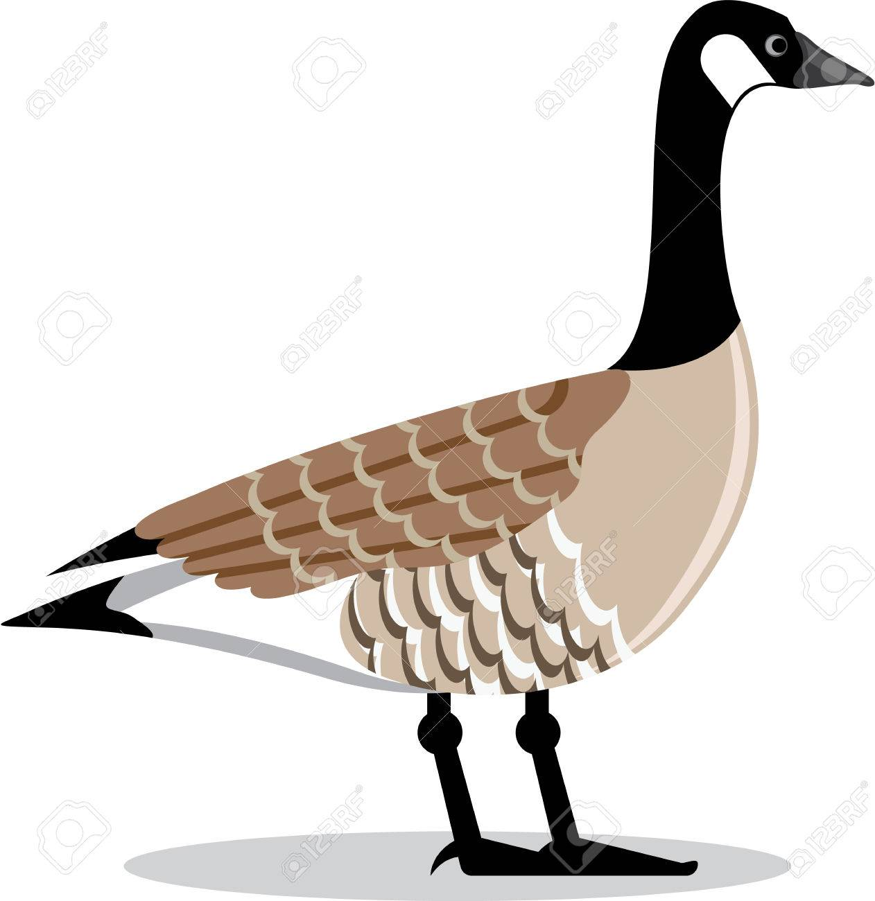 brown goose vector stylized illustration clip art image royalty free rh 123rf com goose clipart black and white goose clipart png