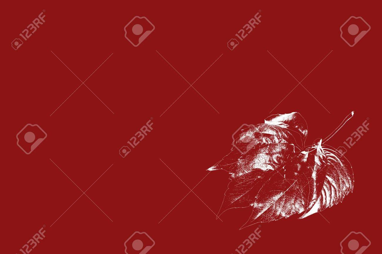 Immagini Stock Su Un Semplice Sfondo Rosso è Una Foglia Dautunno