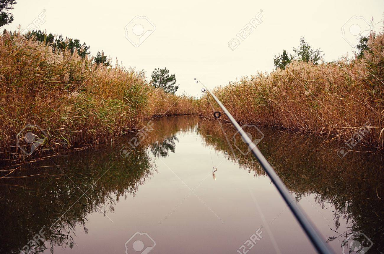Freshwater fishing license - Freshwater Fishing Concept A Rod And Line Extend Out Over A Tranquil Lake With Reflections