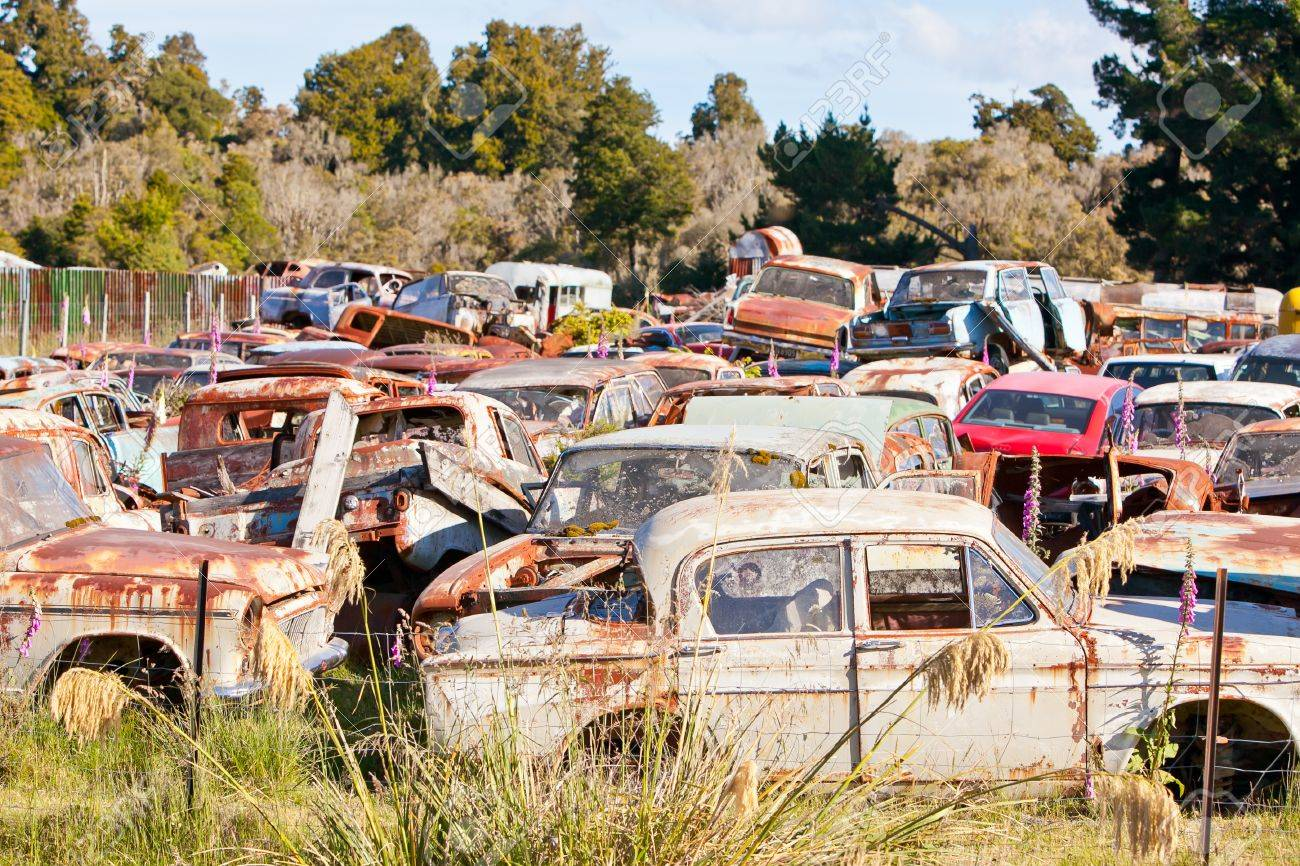Old Rusty Cars Piled Up In A Vehicle Wrecking Yard New Zealand ...