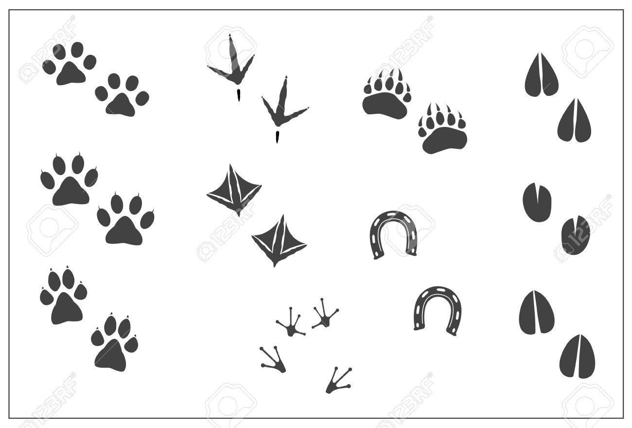 動物の足跡-猫ポウ、犬足、クマ足、鳥鶏の足、アヒルの足、ホースシュー
