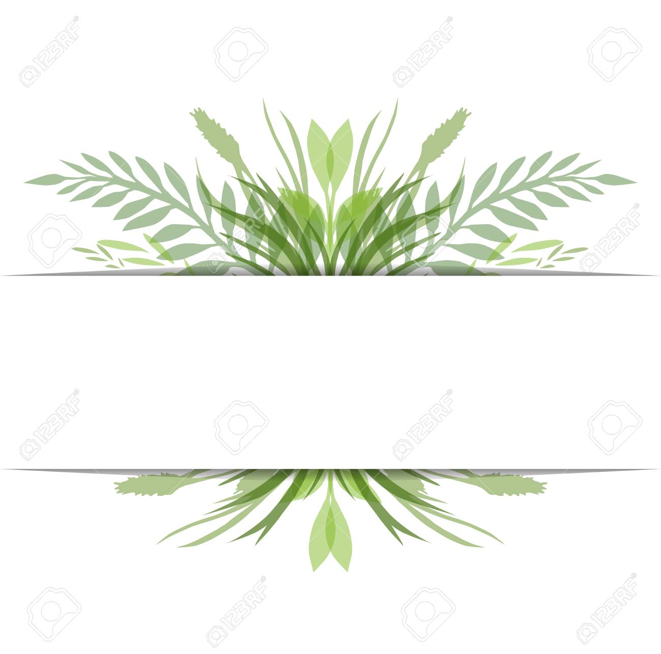 Cover with vector leaves, plants and herbs with space for text