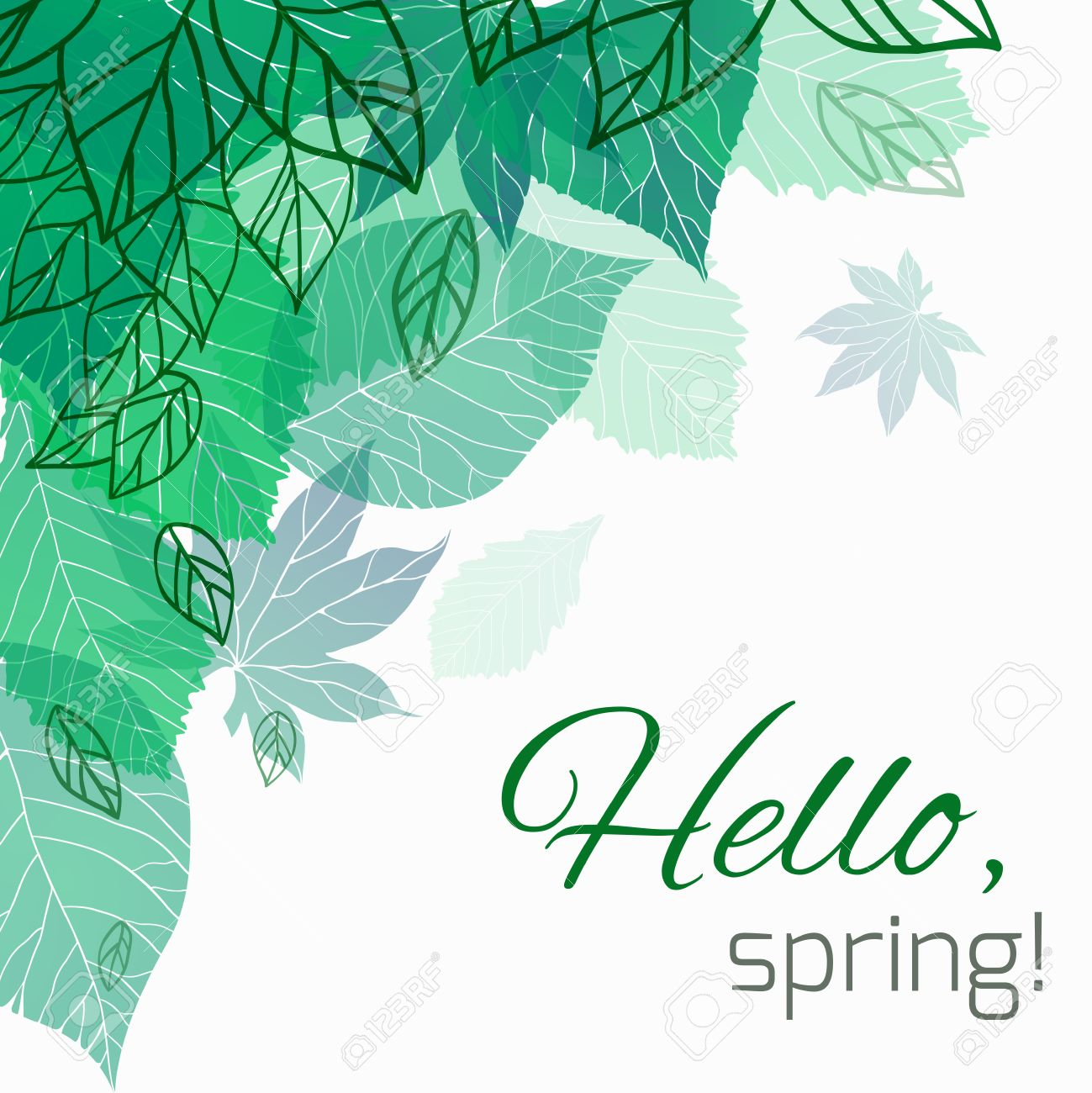 Spring vector card with doodle and green leaves for postcard, flyers, brochures and your business - 52562123