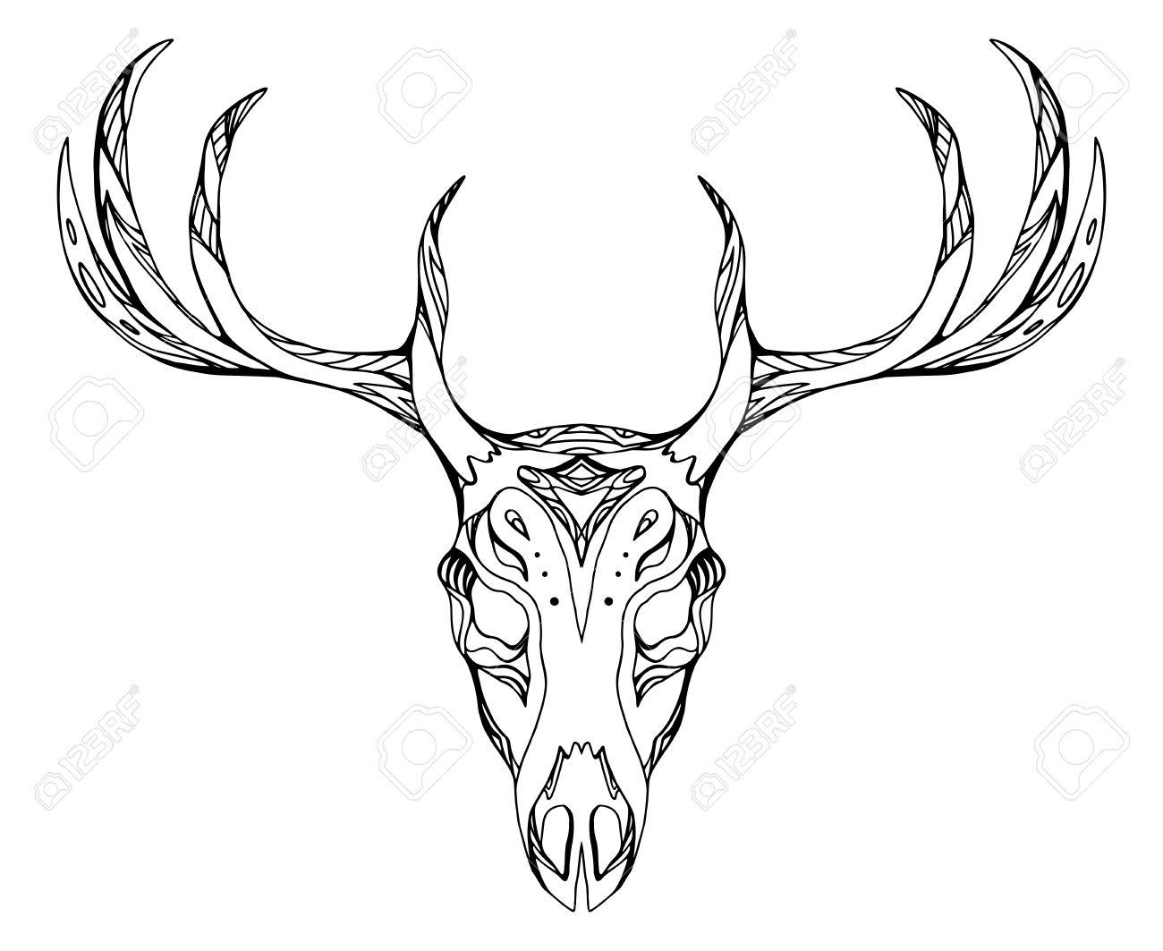 Ilustración De Contorno De Un Cráneo De Venado Con Cuernos Con El ...