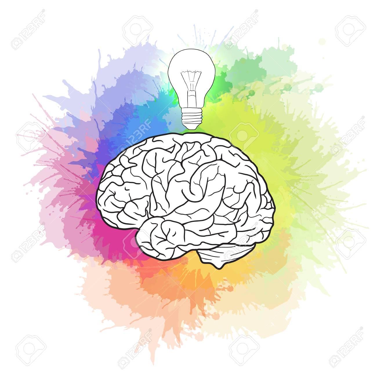 Captivating Linear Illustration Of Human Brain With Light Bulb And Rainbow Watercolor  Sprays. Creativity, Idea Photo Gallery