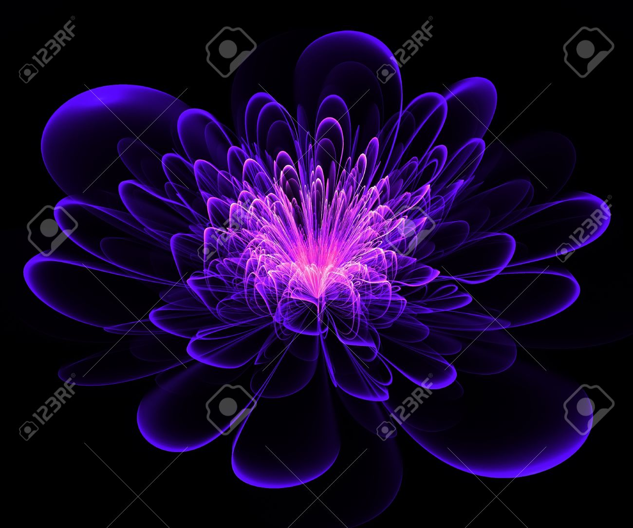 Beautiful blue and purple flower on black background computer beautiful blue and purple flower on black background computer generated graphics stock photo izmirmasajfo