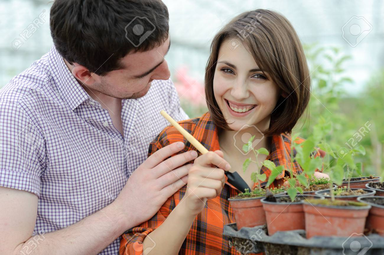 An image of a young couple planting something into the pot Stock Photo - 10053795