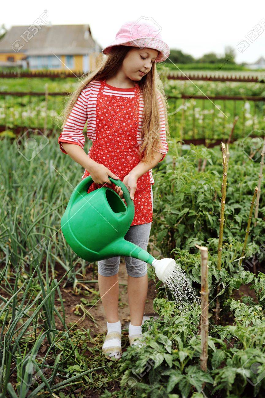 Kitchen Garden Plants Girl Watering Plants In A Kitchen Garden Stock Photo Picture And