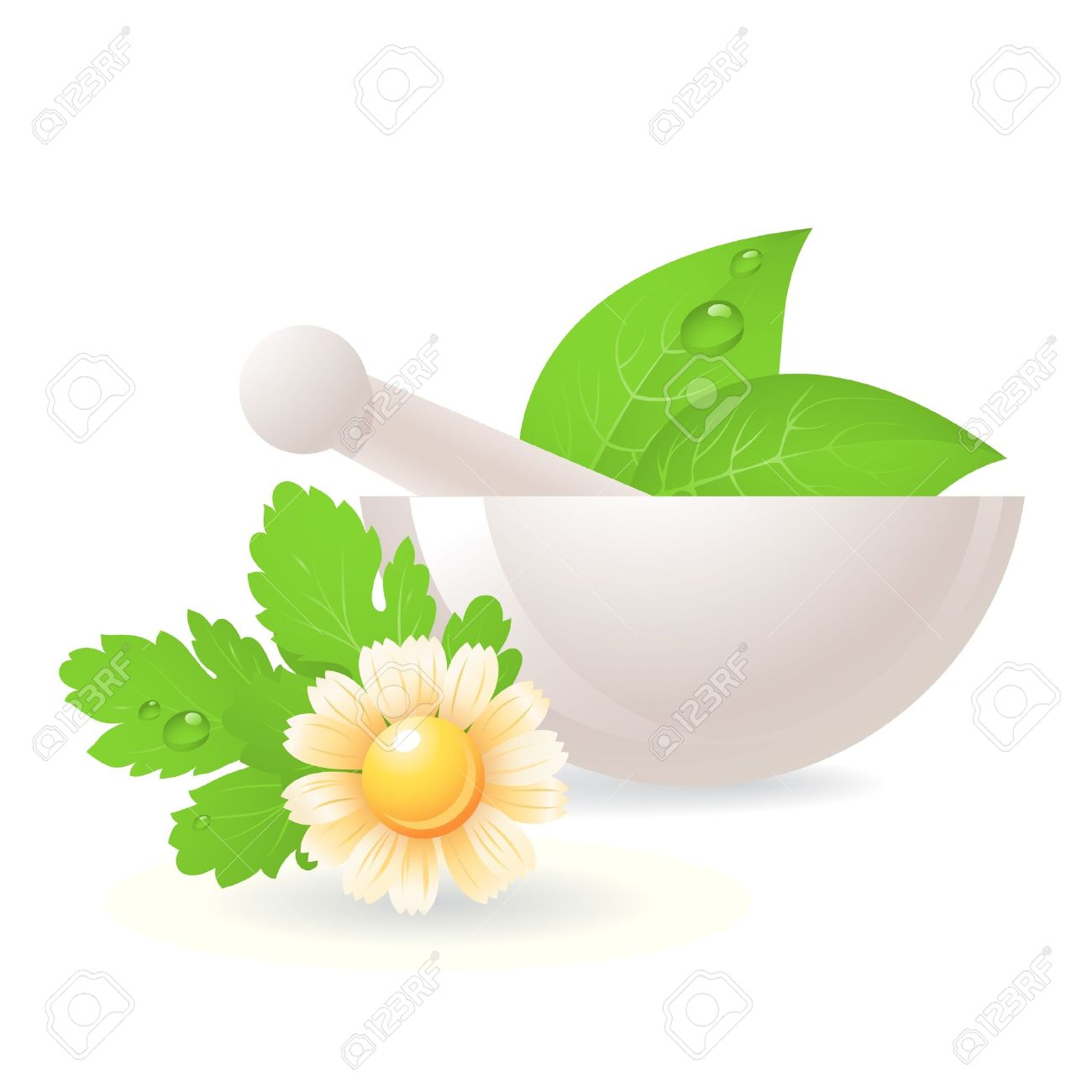 Mortar with herbs and camomile,alternative medicine. - 9842892