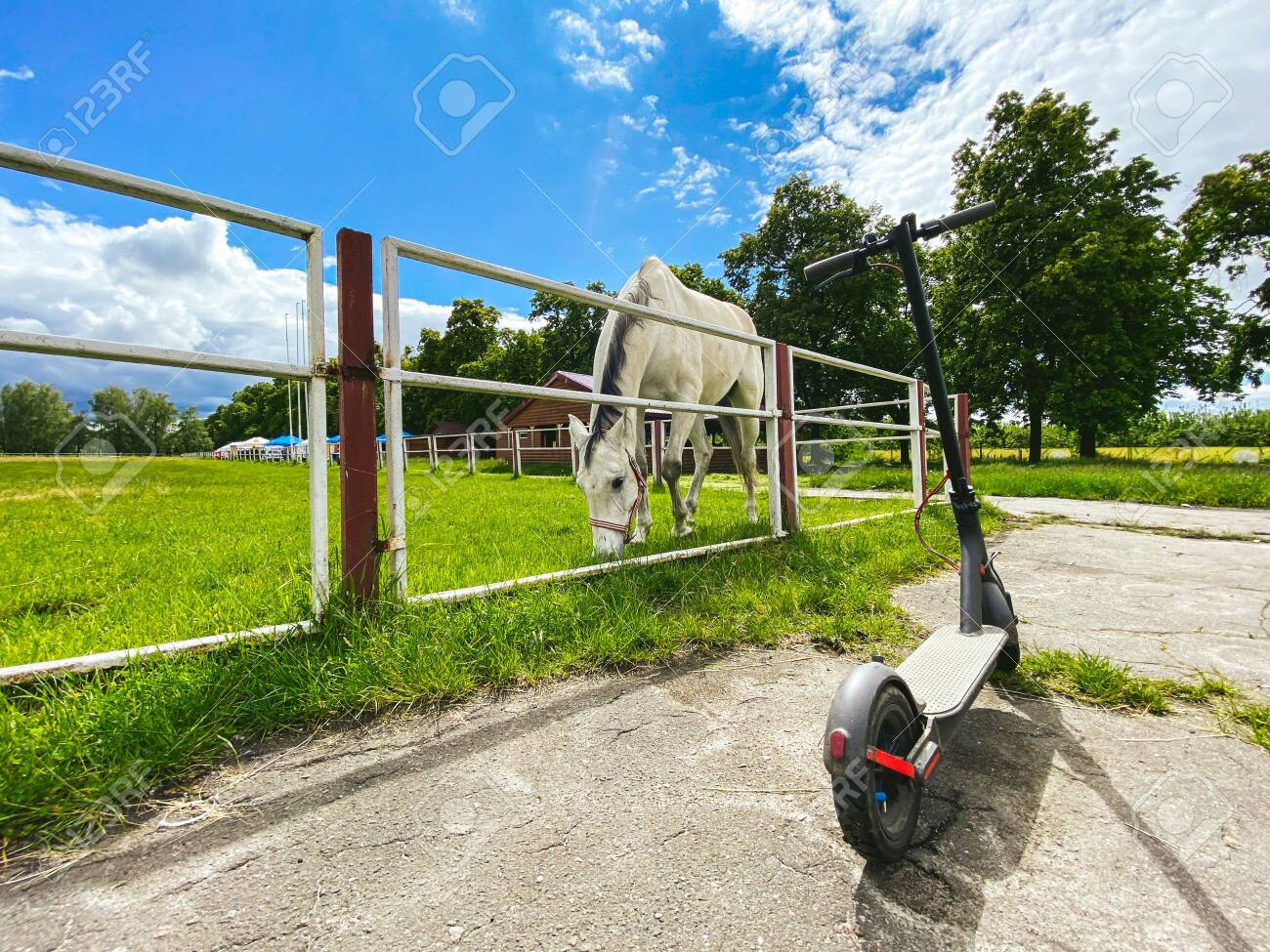 Horse in the arena. In the stall is a beautiful white horse. An electric scooter is parked near the horse arena. Animal and electric transport. Past and future are near. Eco friendly mobility concept. - 148838373