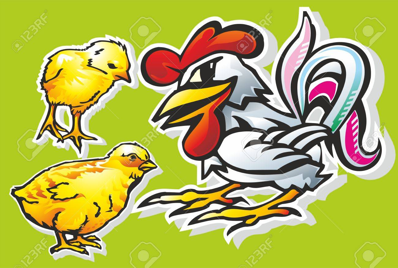 chickens rooster birds wings feathers beak comb feet tail claws Stock Vector - 17530715