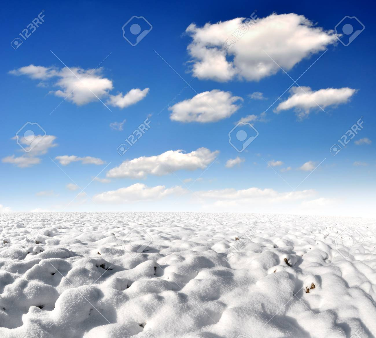 Snowy winter landscapes Stock Photo - 8493959