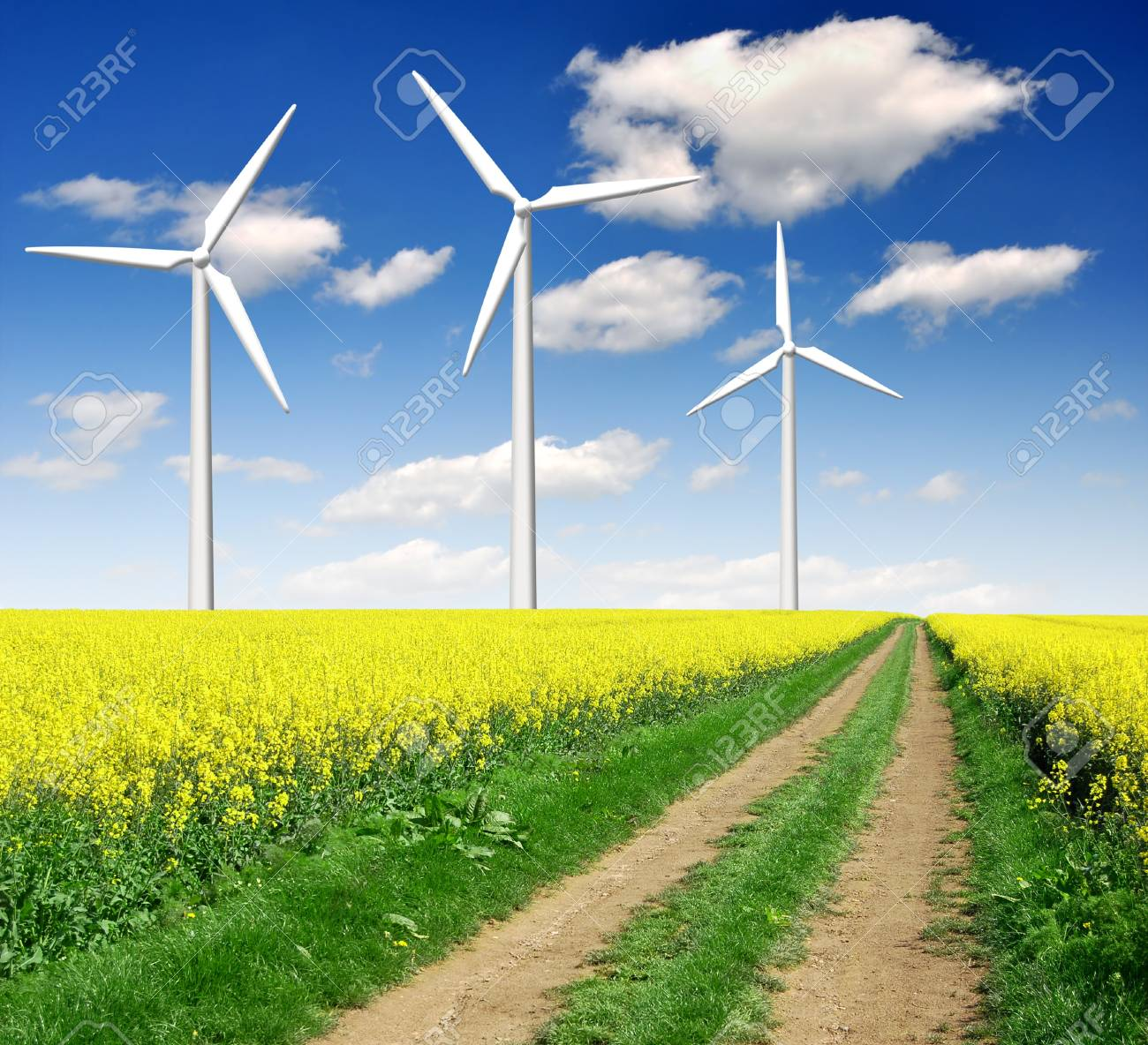 rapeseed field with wind turbine against the blue sky Stock Photo - 11287331