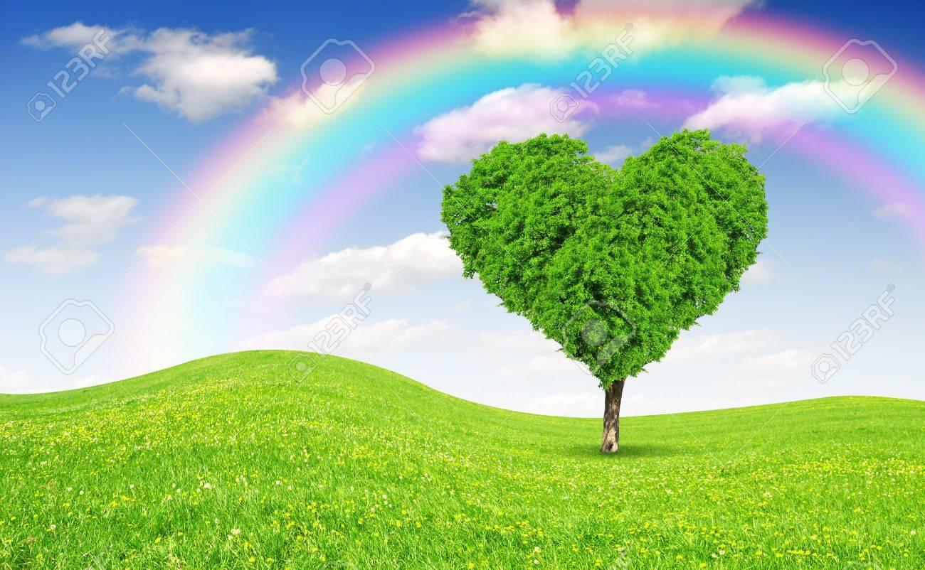 Paisaje De Primavera Con El árbol En Forma De Corazón Fotos