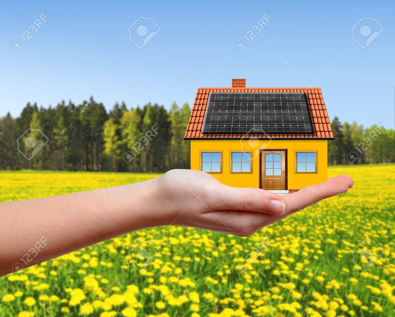 The house in hands Stock Photo - 19789085
