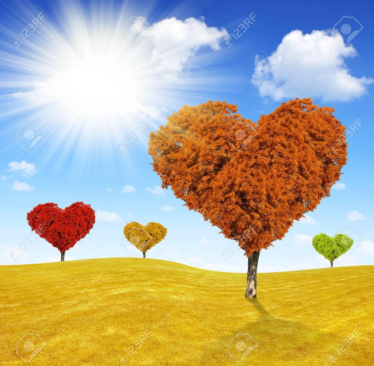 Paisaje De Otoño Con El árbol En Forma De Corazón Fotos Retratos