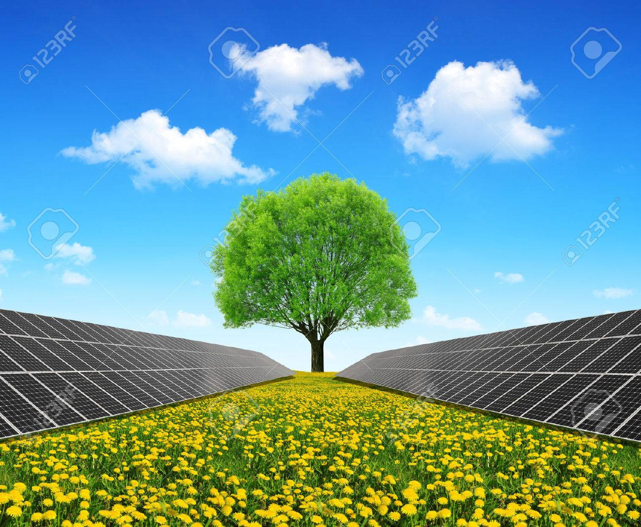 Solar energy panels and tree on dandelion field. Clean energy. - 49272450