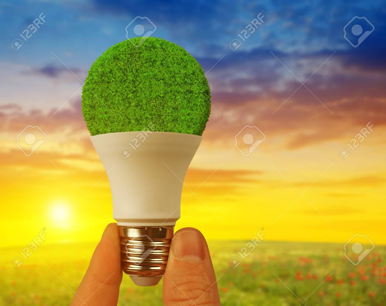Économie Au En SoleilLampe Ampoule Coucher D'énergie Du Led Eco À Main 34cRLA5jSq