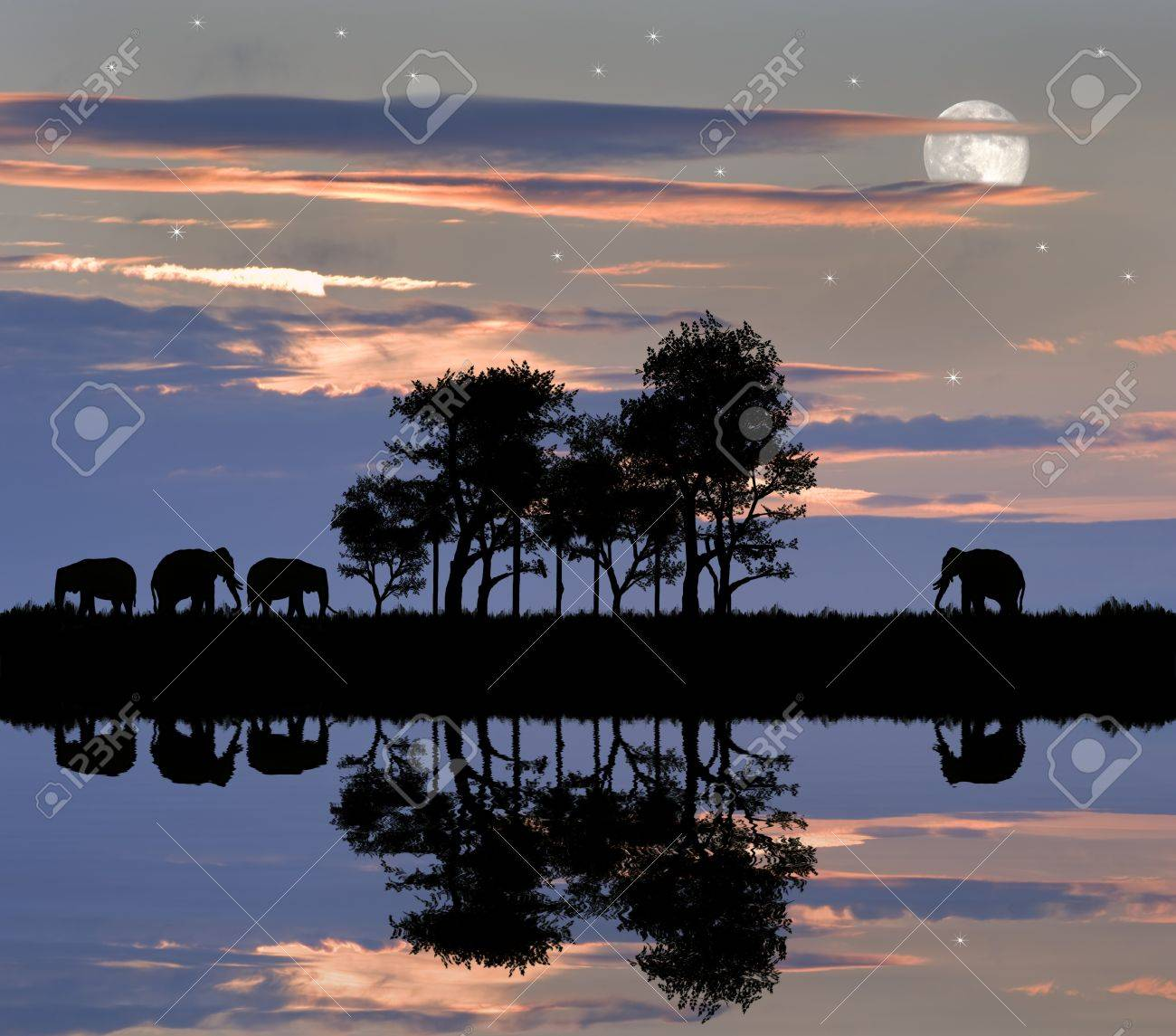 Silhouette of animals in Africa theme setting with beautiful colorful sunset Stock Photo - 8805265