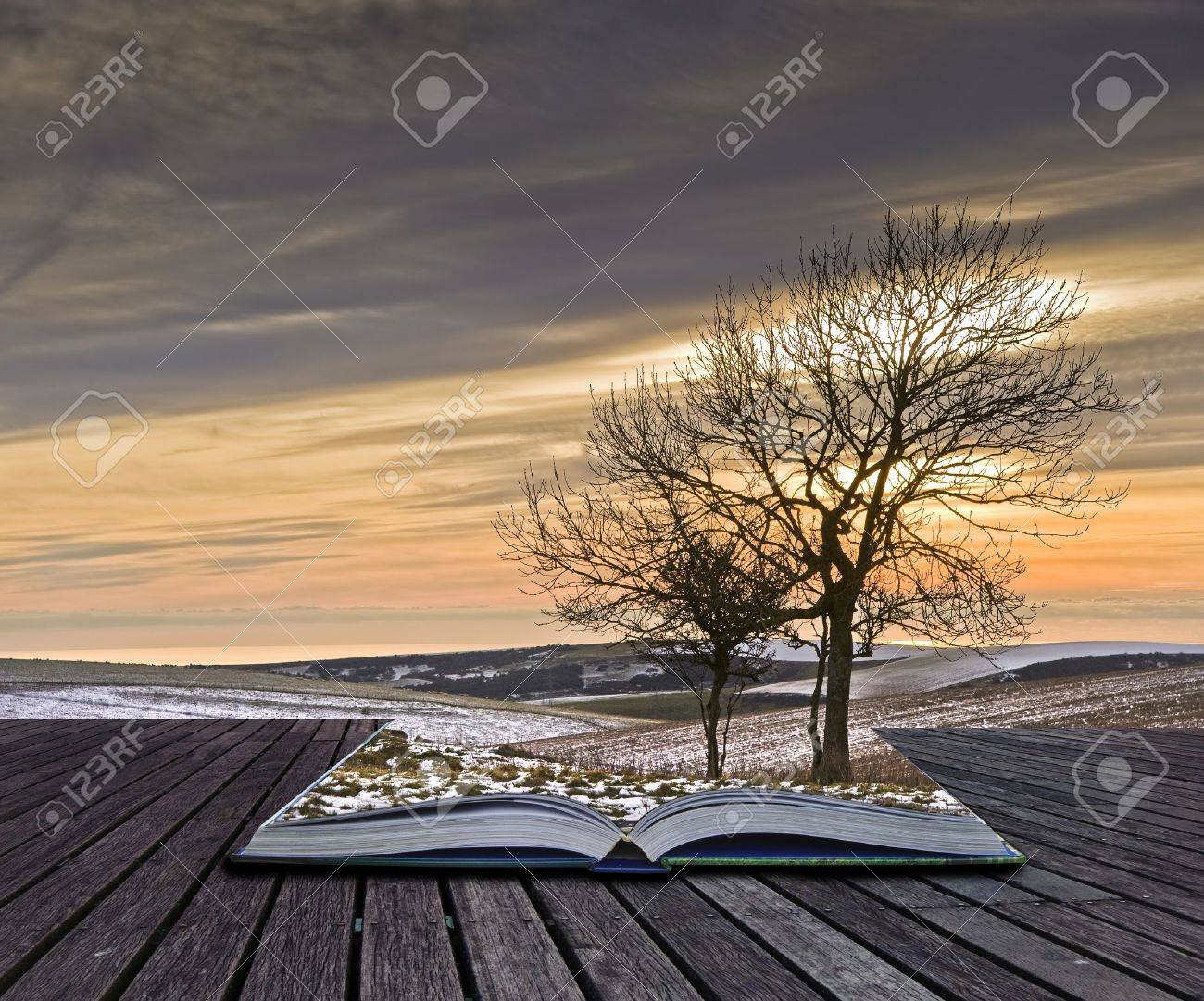 Creative concept idea of Winter landscape coming out of pages in magical book Stock Photo - 10219048