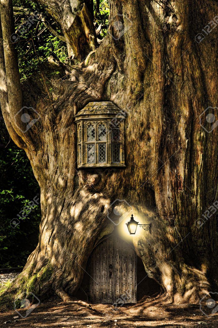 Banque Du0027images   Fairytale Maison Dans Un Tronc Du0027arbre Dans La Forêt