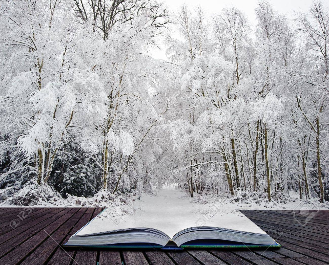 Beautiful landscape of glistening frost and snow covered trees coming out of pages in magic book Stock Photo - 12651248