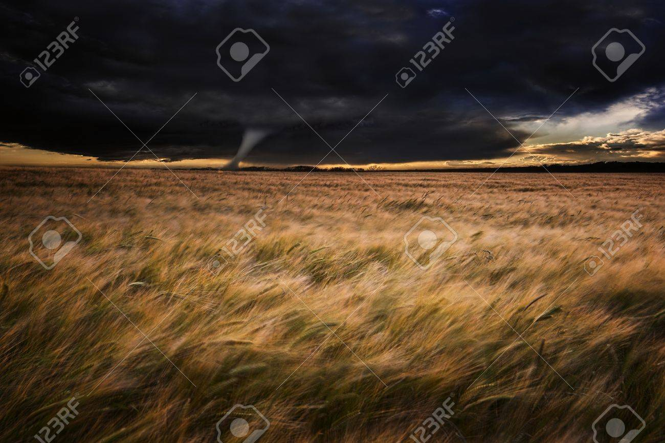 Dark stormy skies over Summer landscape with twister tornado touching down Stock Photo - 17309730