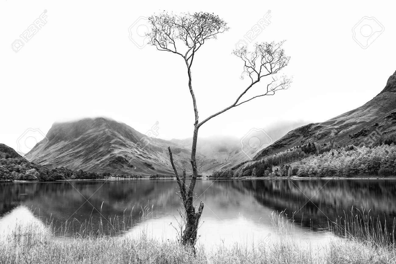Stock photo stunning black and white high key landscape image of lake buttermere in lake district england