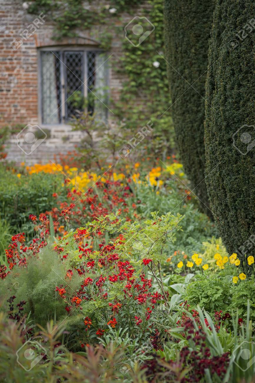 Beautiful shallow depth of field landscape image of english country beautiful shallow depth of field landscape image of english country garden borders with vibrant tulips and mightylinksfo