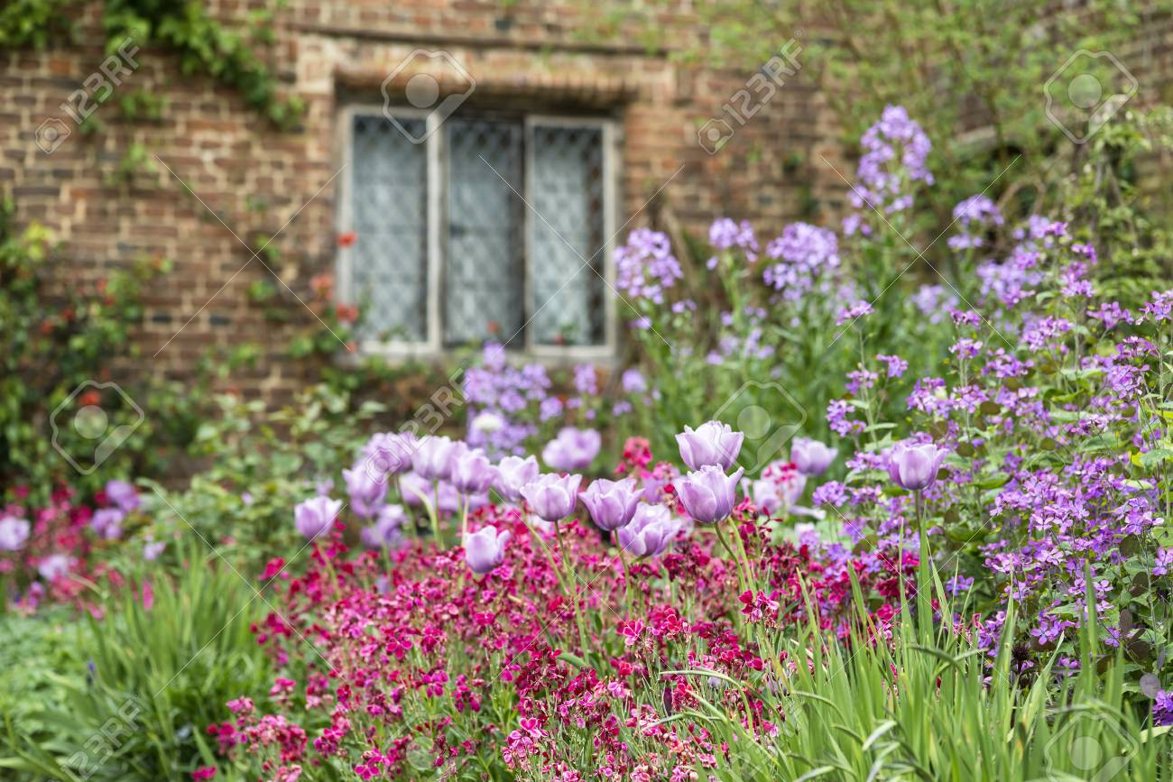Quintessential english country garden scene landscape with fresh quintessential english country garden scene landscape with fresh spring flowers in cottage garden stock photo mightylinksfo
