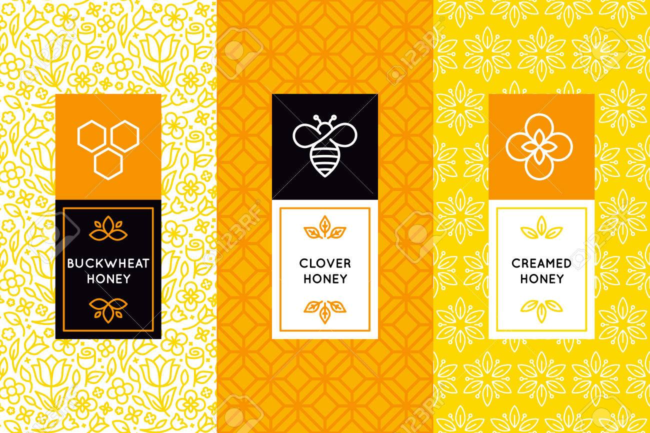 Vector Packaging Design Templates In Trendy Linear Style Natural