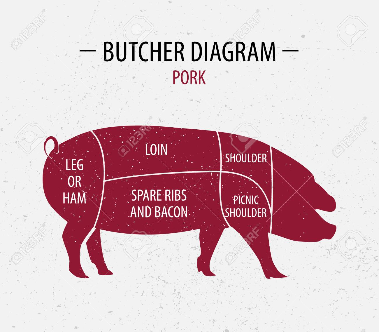 Cut Of Pork. Poster Butcher Diagram For Groceries, Meat Stores ...