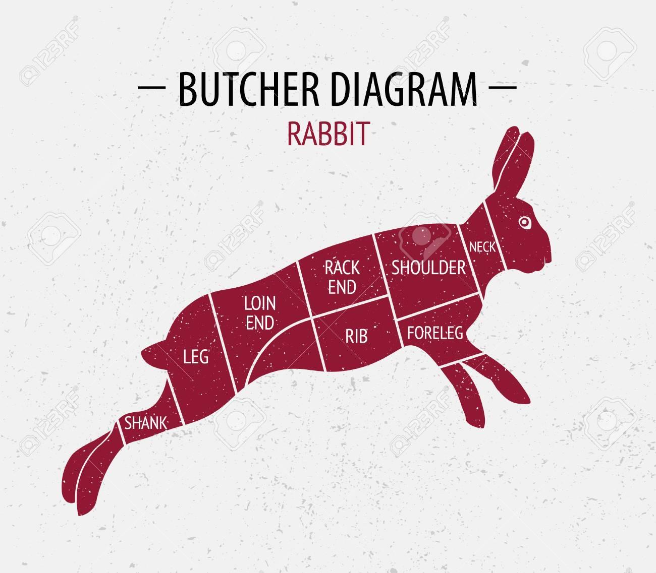 94542374 cut of rabbit poster butcher diagram for groceries meat stores butcher shop farmer market poster for cut of rabbit poster butcher diagram for groceries, meat stores