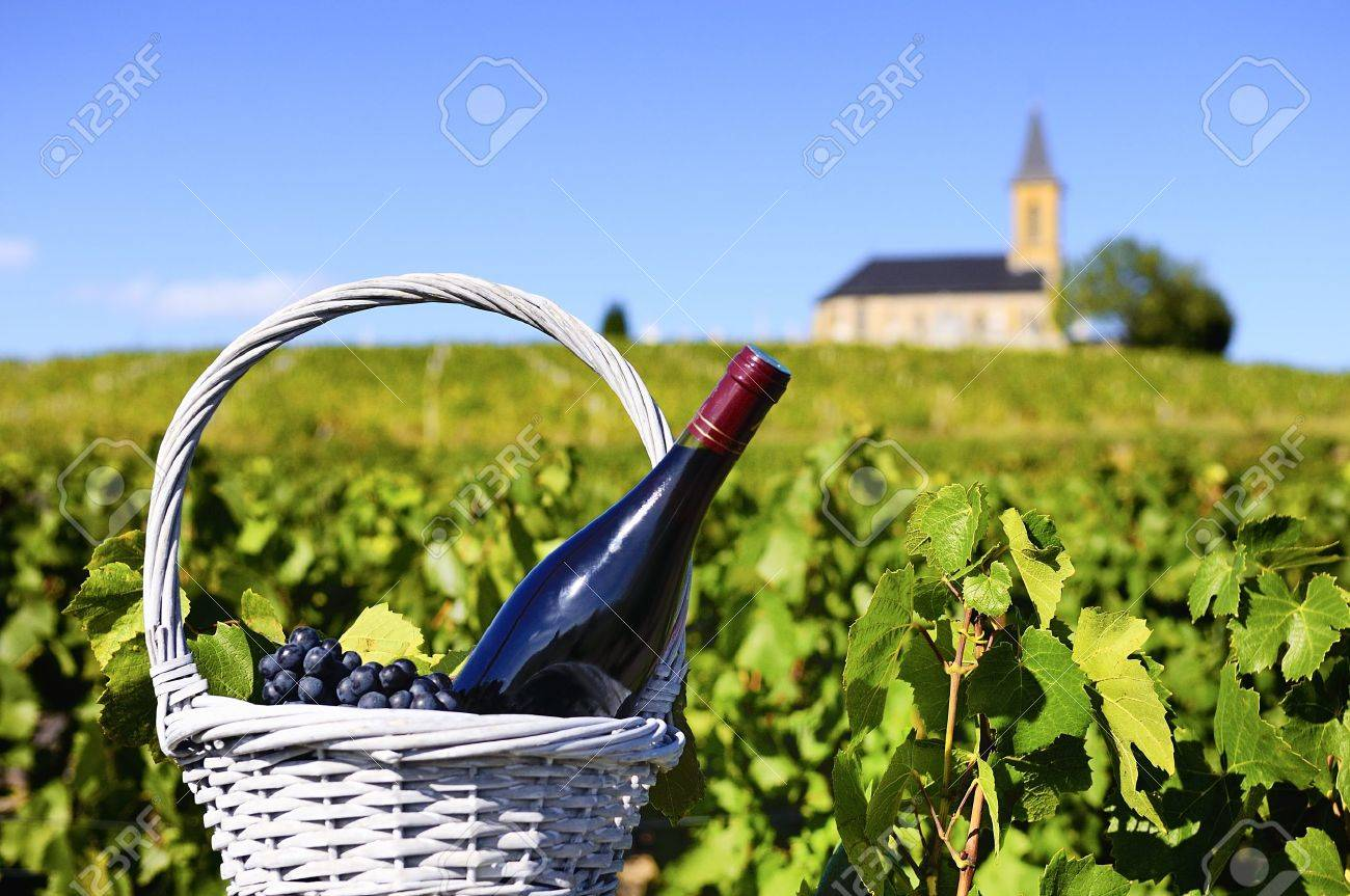 Bottle of red wine in a basket of reasons near a typical church - 14924852