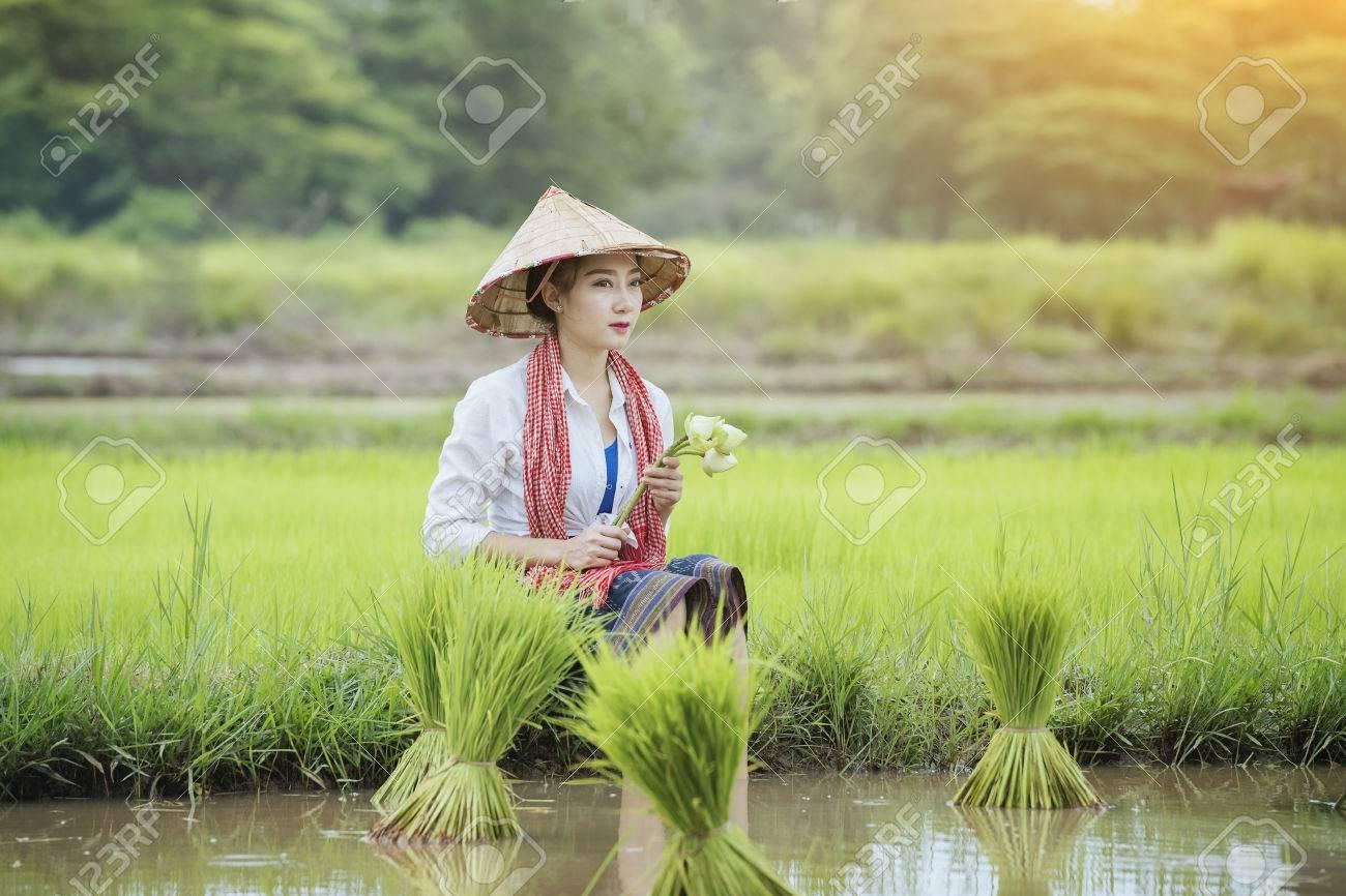 梅雨の季節の若い農家米、アジア...