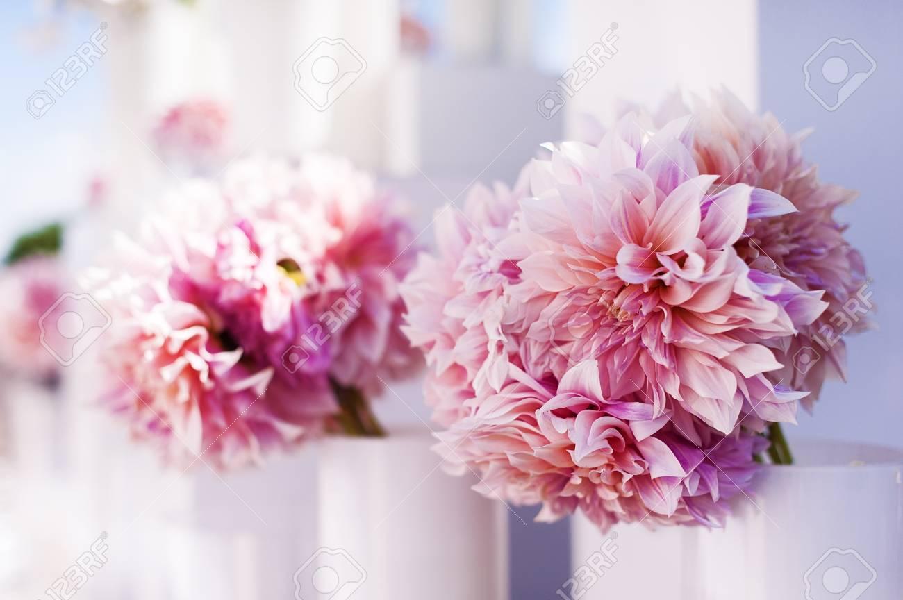 Hochzeitsdekorationen Lizenzfreie Fotos Bilder Und Stock Fotografie