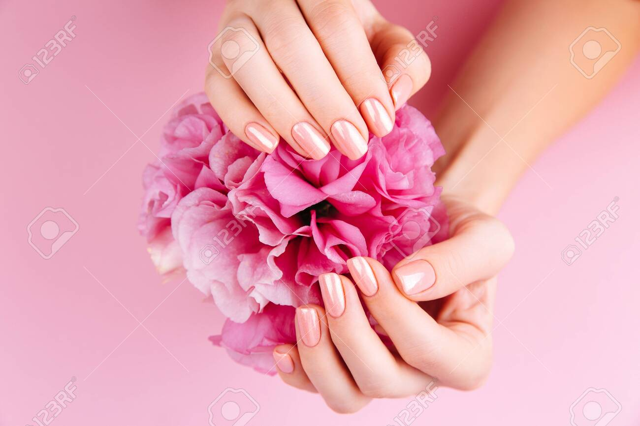 Beautiful Woman Hands with fresh eustoma. Spa and Manicure concept. Female hands with pink manicure. Soft skin, skincare concept. Beauty nails. Over beige background - 135038748